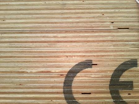 Blyskiva på plywood